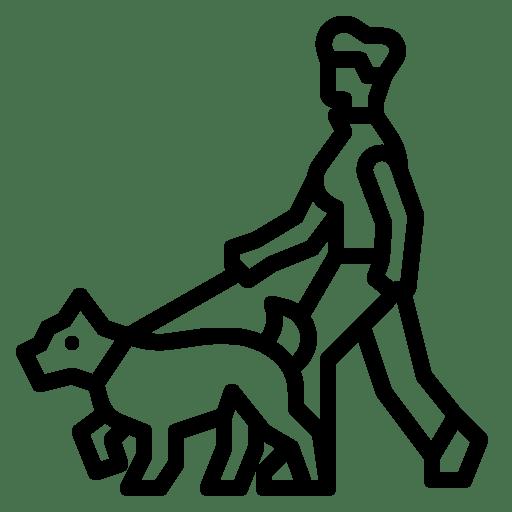 Dog spa treatments